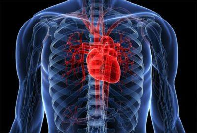 как кальян влияет на сердце